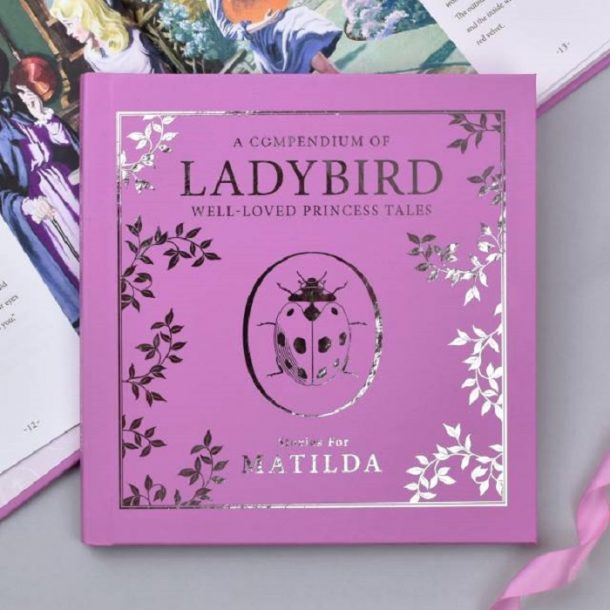 Personalised Ladybird Pink Compendium Book