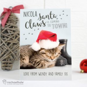 Personalised Rachael Hale Santa Claws Christmas Cat Cards