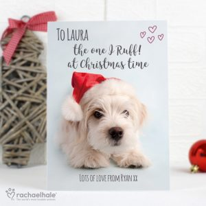 Personalised Rachael Hale Terrier Christmas Cards