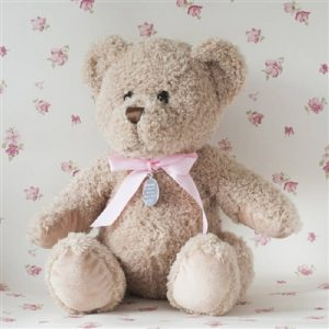 Personalised Baby Girl Bramble Bear