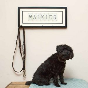 Walkies Dog Lead Hook
