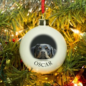 Personalised Photo Upload & Paw Prints Bauble