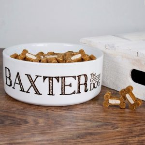 Personalised Greedy Dog Food Bowl