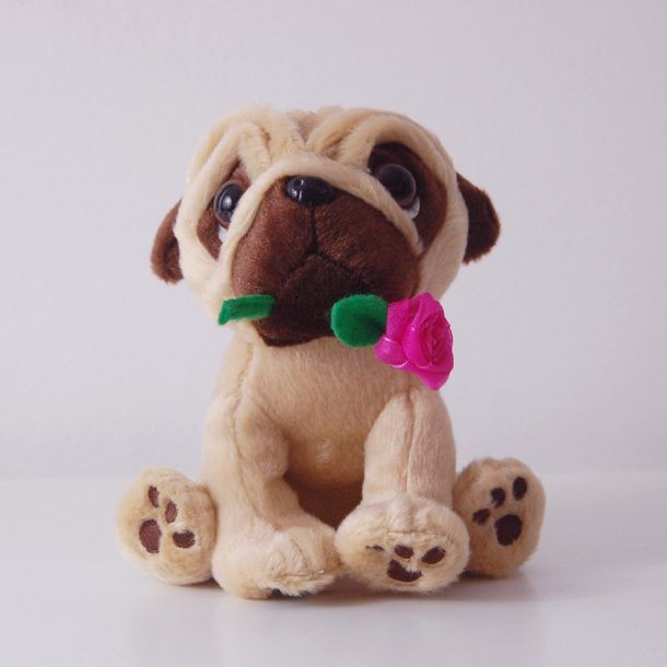 Mother's Day Pug