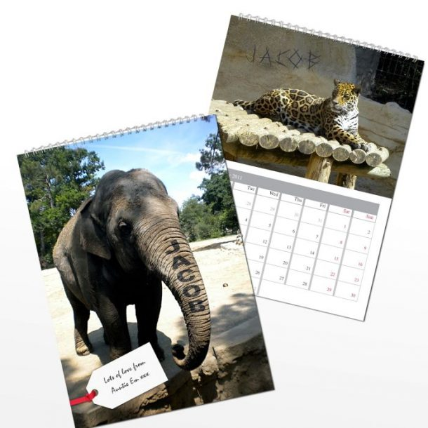 Personalised Zoo Animals Calendar