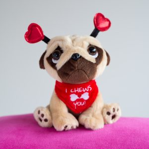 Valentine's Pugsley the Pug