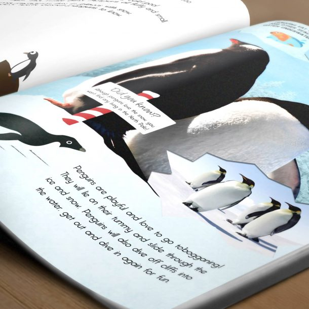 Personalised My Day at the Zoo Book